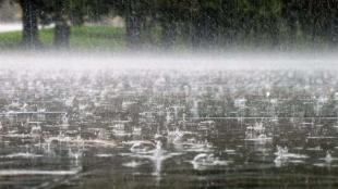 На Житомирщині знову очікують дощ