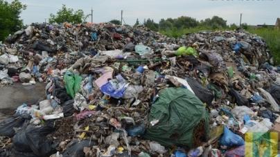 """У Новоград-Волинському районі кілька вантажівок знову висипали """"львівське"""" сміття"""