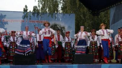 Новоград витратив майже чверть мільйона на святкування фестивалю «Лесині джерела»