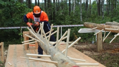 На Житомирщині визначили найкращих лісорубів року (ФОТО)