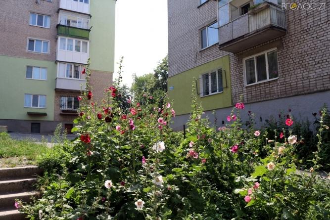 ФОТОекскурія Житомиром: вулиця Чехова