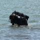 Коростишівський район: на кар'єрі потонув 22-річний чоловік