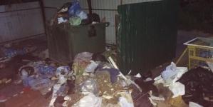 Житомиряни два тижні потопають у смітті і три доби жили без води