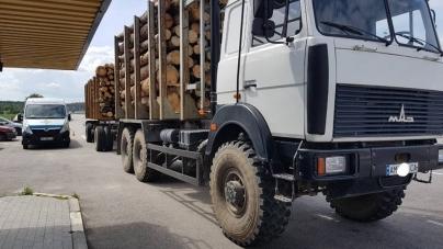 На Житомирщині лише за місяць на «нелегальних» перевізників Укртрансбезпека склала 70 актів