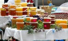 У Житомирі розпочався обласний ярмарок меду (ФОТО)