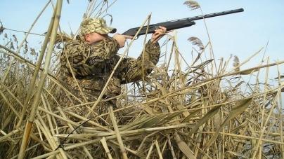 На Житомирщині відкривають сезон полювання на пернатих