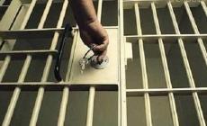 На Житомирщині заарештували чоловіка, який розбещував 9-річну дівчинку