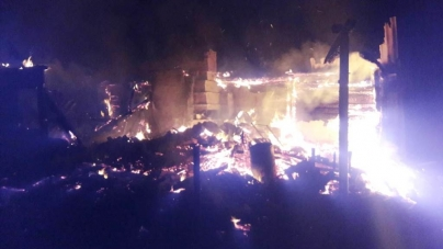 Під час пожежі в Ємільчинському районі загинула жінка