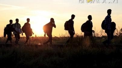 За місяць на Житомирщині виявили 72 нелегальних мігрантів