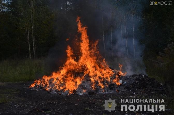 Під Житомиром поліцейські знищили у вогні наркотиків на 2 мільйони гривень