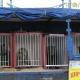 У Житомирі можуть заборонити цирк із тваринами