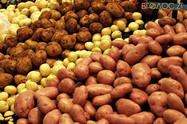 Кожен жителі області за рік з'їдає майже 200 кг картоплі