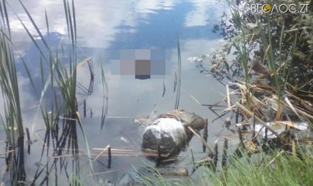 Житомирські поліцейські шукають Айфон, який належав вбитому хмельничанину