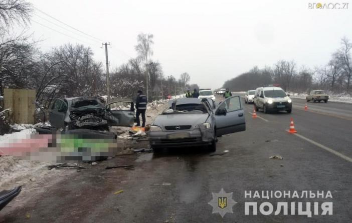У ДТП під Житомиром загинули троє людей. Ще декілька отримали травми