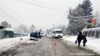 У Радомишльському районі під час ДТП загинула жінка