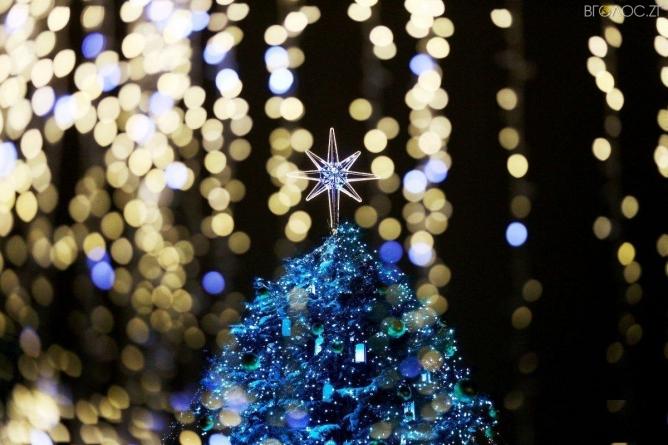 Стало відомо, якою буде цьогоріч головна новорічна ялинка у Житомирі
