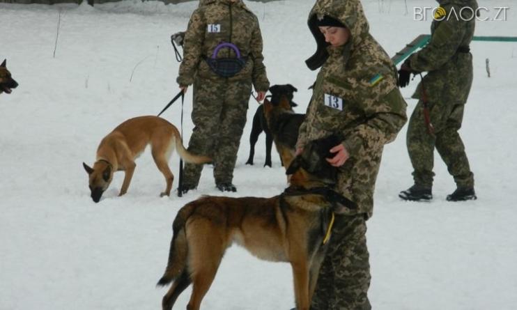 Житомир: відбувся випуск поліцейських кінологів із 7 регіонів України