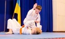 У Житомирі відбувся Всеукраїнський дитячий фестиваль айкідо «Шлях Воїна»