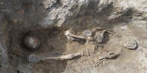 На Житомирщині знайшли рештки солдата, який загинув у бою 1941 року