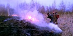 Понад 20 полів з сухою травою загорілися протягом одного дня на Житомирщині