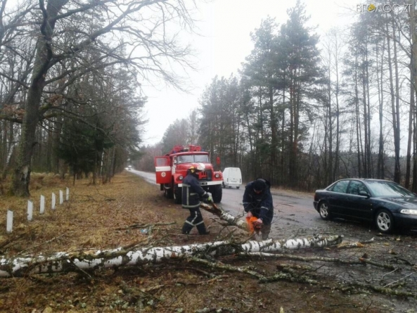 Внаслідок буревію 23 населених пункти області залишилися без електрики
