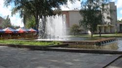 Прокату дитячих веломобілів біля кінотеатру «Жовтень» у Житомирі більше не буде, – виконком