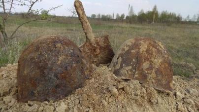 Останки двох солдатів, які загинули у 1941 році, знайшли на Житомирщині