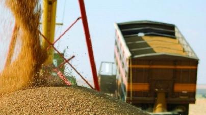 Понад 815 тисяч гривень заробив житель області, продаючи чуже зерно