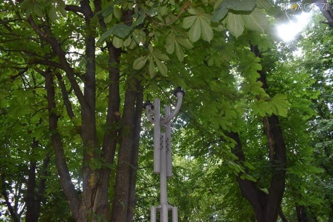 У Новограді-Волинському невідомі пошкодили 17 ліхтарів та з клумб вкрали майже 650 квітів
