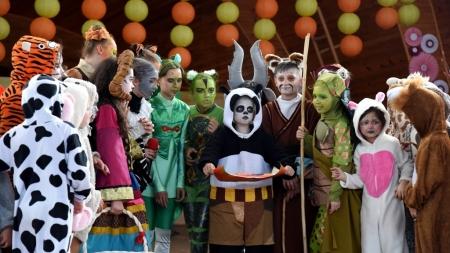 """Красиві декорації, розкішні костюми, різноманітні трюки: у Житомирі відбулась благодійна вистава """"Панда Кунг-фу"""""""