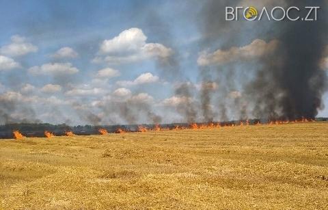 На Житомирщині оголосили надзвичайно високий рівень пожежної небезпеки