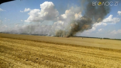 Пекельні жнива: через несправний комбайн вщент згорів врожай пшениці
