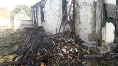 У Бердичівському районі під час пожежі в житловому будинку загинула жінка
