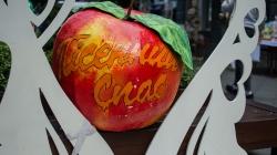 У Житомирі розпочався міжнародний фестиваль «Пісенний Спас» (ФОТО)