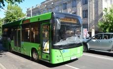 Автобуси №53 і 53-а забрали, бо вони заважали заробляти приватним перевізникам, – житомиряни