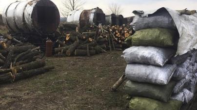 Держпродспоживслужба не може перевірити шкідливість випалювання деревного вугілля на Бердичівщині