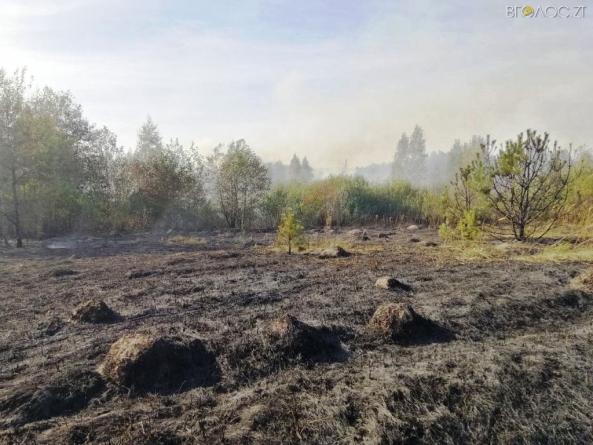 За добу в області 15 разів горіли поля, а також торф та ліс
