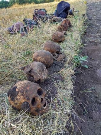 Бердичівський район: на сільському городі знайшли останки 11 солдат, які лежали один на одному