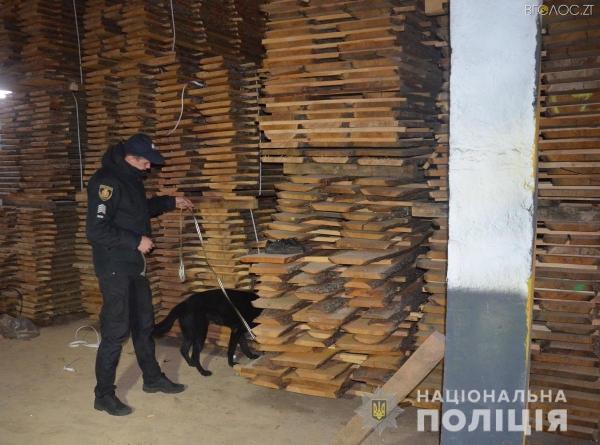 Поліція розслідувала вбивство, а знайшла підпільну пилораму та підроблені документи