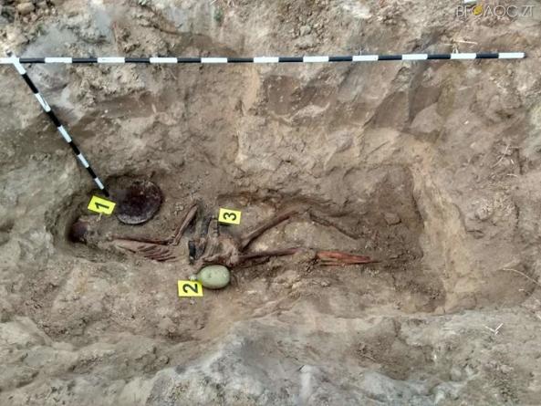 На Житомирщині знайшли останки бійців5-ї армії Потапова