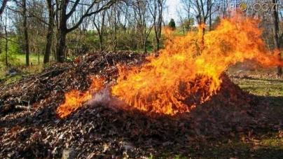 У міськраді розповіли, які штрафи чекають на житомирян за спалювання листя та сміття