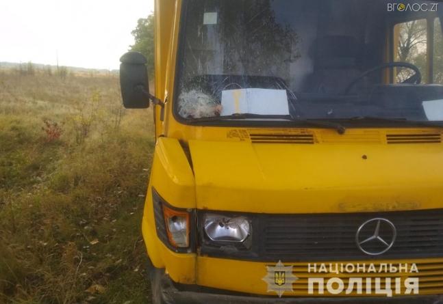 У Любарському районі Mercedes-Benz збив насмерть 71-річну жінку