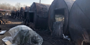 """У Новограді викрили масштабне розкрадання лісу, який """"оформляли"""" на  безхатченків та вивозили до ЄС"""