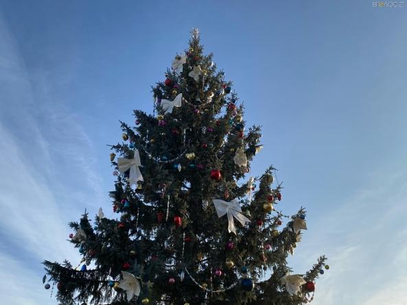 """У Житомирі 19 грудня """"запалять"""" головну ялинку міста"""
