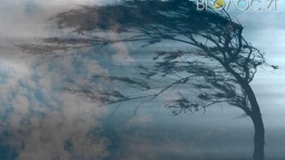 Синоптики розповіли, якою буде погода 23 січня