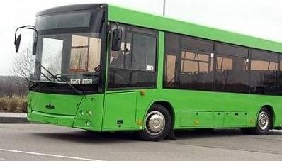 У Житомирській міськраді анонсували два нові автобусні маршрути