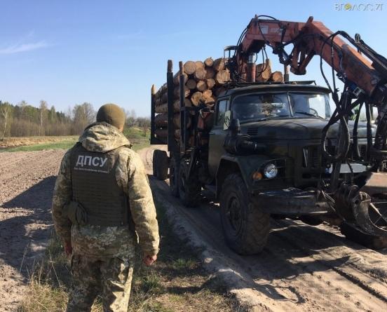 Прикордонники зупинили вантажівку з 15 кубометрами лісу