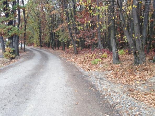 Врізався у шлагбаум: на лісовій дорозі розбився мотоцикліст
