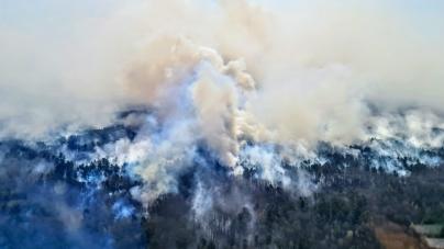 Овруцька мерія створила комісію для визначення збитків внаслідок пожеж
