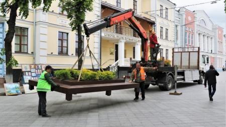 """""""Зеленбуд"""" почав встановлювати лавки зрослинами на Михайлівській"""